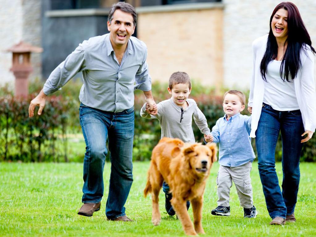 картинки семья собака дом бриться недостаточно, важно