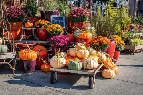 Best Shops & Stores in Lewiston-Auburn for Fall Home Décor by Maine Source Homes & Realty